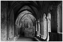 St Trophime cloister. Arles, Provence, France ( black and white)