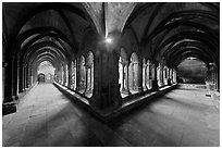 Galleries, Saint Trophimus cloister. Arles, Provence, France ( black and white)