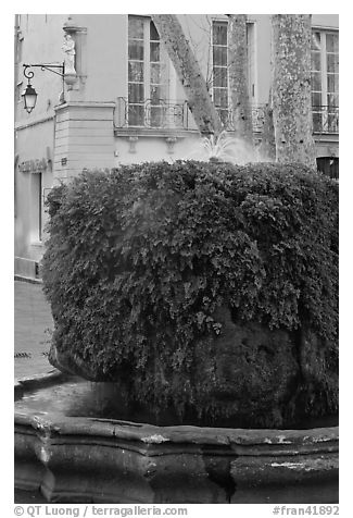 Fountain, Cours Mirabeau. Aix-en-Provence, France (black and white)