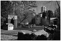 Tombs, mausoleums, and church, Alyscamps. Arles, Provence, France ( black and white)