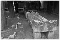 Sarcophagus, Alyscamps. Arles, Provence, France ( black and white)