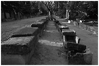 Rows of tombs on Alyscamps ancient burial grounds. Arles, Provence, France ( black and white)