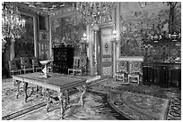 Salon Francois 1er, Fontainebleau Palace. France ( black and white)