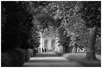 Forested alley and palace, Fontainebleau Palace. France ( black and white)