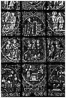 Detail of stained glass window, Chartres Cathedral. France ( black and white)