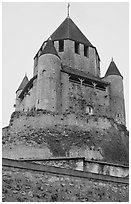 Caesar's Tower, Provins. France ( black and white)