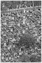 Tombs in Cimetierre du Montparnasse seen from above. Paris, France ( black and white)
