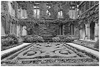 Formal garden in courtyard of hotel particulier. Paris, France ( black and white)