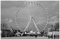 La grande roue from the Tuileries Garden. Paris, France ( black and white)