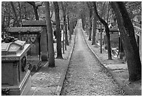 Alley and tombs in winter, Pere Lachaise cemetery. Paris, France ( black and white)
