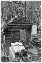 Mossy tombs, Pere Lachaise cemetery. Paris, France ( black and white)