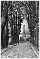 Trees and memorial, Pere Lachaise cemetery. Paris, France ( black and white)