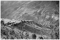 Verdant valley, Lahaul, Himachal Pradesh. India (black and white)