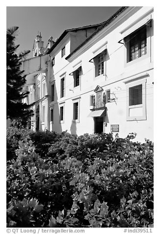 Convent of St Monica and flowers, Old Goa. Goa, India (black and white)