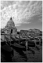 Gondolas, Grand Canal, Santa Maria della Salute church, morning. Venice, Veneto, Italy ( black and white)