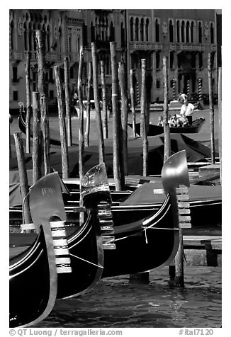 Gondolas prows, with their characteristic ferri. Venice, Veneto, Italy (black and white)