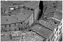 Rooftops seen from Torre del Mangia. Siena, Tuscany, Italy ( black and white)