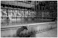 15th century Fonte Gaia (Gay Fountain) on Il Campo. Siena, Tuscany, Italy ( black and white)