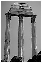 Casa delle Vestali (House of the Vestal Virgins), Roman Forum. Rome, Lazio, Italy ( black and white)