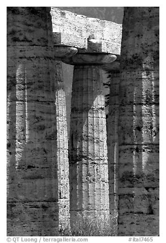 Columns of Temple of Neptune in Doric style. Campania, Italy (black and white)