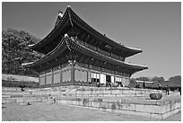Throne Hall, Changdeokgung Palace. Seoul, South Korea ( black and white)