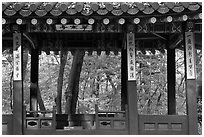Gazebo in autumn, Ongnyucheong, Changdeokgung gardens,. Seoul, South Korea ( black and white)
