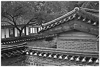 Wall and rooftop details, Yeongyeong-dang, Changdeok Palace. Seoul, South Korea ( black and white)