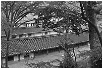 Fall foliage and tile rooftops, Yeongyeong-dang, Changdeokgung Palace. Seoul, South Korea ( black and white)