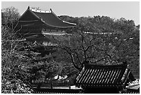 Changdeokgung Palace complex. Seoul, South Korea ( black and white)