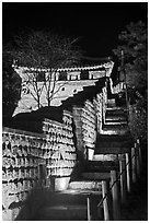 Steep section of wall at night, Namchi, Suwon Hwaseong Fortress. South Korea (black and white)