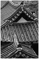 Tiled roofs. Hahoe Folk Village, South Korea (black and white)