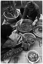 Women mixing traditional fermented kimchee. Gyeongju, South Korea (black and white)