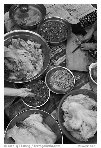 Preparing traditional winter kim chee. Gyeongju, South Korea (black and white)