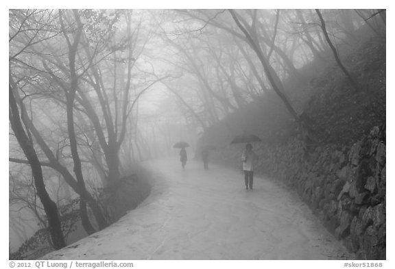 Tourist walking in fog, Seokguram. Gyeongju, South Korea (black and white)