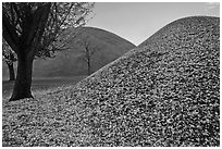 Grassy burial mounds in autumn. Gyeongju, South Korea ( black and white)