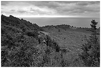 View over crater and ocean,  Seongsang Ilchulbong. Jeju Island, South Korea (black and white)