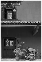 Window, door, and trishaw, Cheong Fatt Tze Mansion. George Town, Penang, Malaysia (black and white)