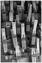 Sticks with names in Chinese characters, Kuan Yin Teng temple. George Town, Penang, Malaysia ( black and white)