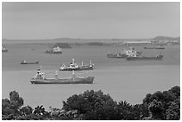 Large cargo ships, Singapore Strait. Singapore ( black and white)