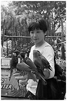 Man holding many parakeets on arm, Sentosa Island. Singapore ( black and white)
