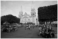 Plaza de los Laureles, planted with laurels, and Cathedral. Guadalajara, Jalisco, Mexico (black and white)