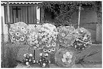 Floral wheels in a cemetery. Mexico ( black and white)