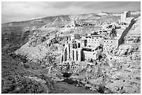 Mar Saba Monastery seen across the Kidron River. West Bank, Occupied Territories (Israel) ( black and white)