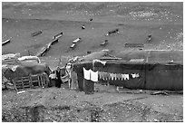 Bedouin camp, Judean Desert. West Bank, Occupied Territories (Israel) (black and white)
