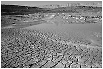Cracked mud and shallow pond, near Mitzpe Ramon. Negev Desert, Israel (black and white)