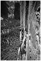 Belay on the third pitch of Mescalito, El Capitan. Yosemite, California (black and white)