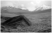 Hills and mountains near Sable Pass. Denali National Park, Alaska, USA. (black and white)