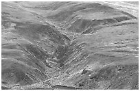 River cut in tundra foothills near Eielson. Denali National Park, Alaska, USA. (black and white)