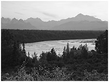 Mt Mc Kinley from Denali State Park. Denali National Park, Alaska, USA. (black and white)