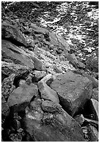 Lichen covered rocks at the base of Arrigetch Peaks. Gates of the Arctic National Park, Alaska, USA. (black and white)